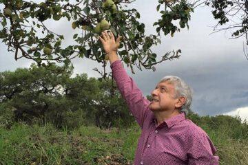 AMLO llega a tierras chiapanecas arribando a su hacienda en Palenque